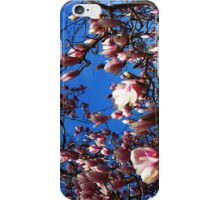 Pink Magnolias iPhone Case/Skin