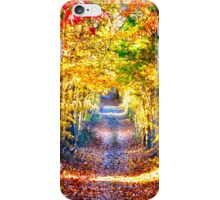 Trail of Colors iPhone Case/Skin