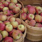 Bushels of Apples by Tracy M