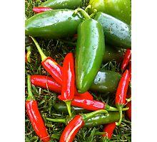 Spicy Chili's  Photographic Print