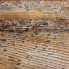 Rocky Seashore at Dusk by Kathie Nichols