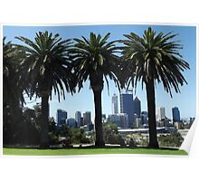 Perth City From Kings Park. Poster