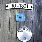 Power Line Tags by Russell Voigt