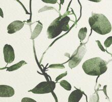 Hoya Carnosa / Porcelainflower Sticker