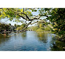 Bakewell Riverside, Through The Branches  Photographic Print