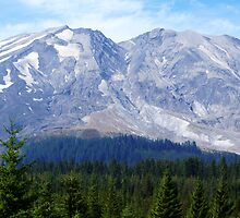 Mt St Helens from the Lava Canyon Road by Loisb