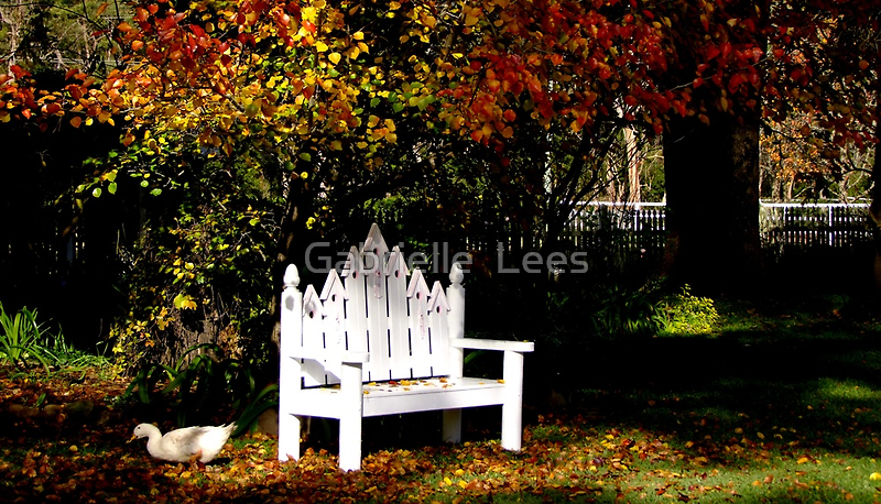 Duck The Autumn Leaves Are Falling by Gabrielle  Lees