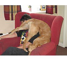 pup yoga II Photographic Print