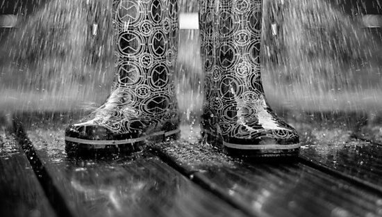 STANDING IN THE RAIN by Rob  Toombs