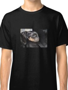 A New Arrival - Rottweiler Puppy Classic T-Shirt