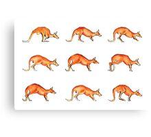 Red Kangaroo in Motion Canvas Print