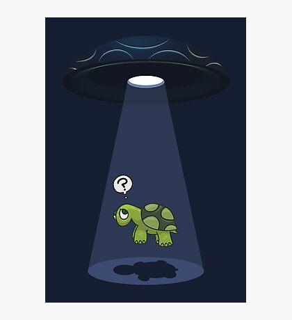 return of the sky turtles... Photographic Print
