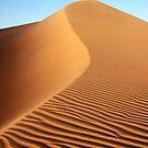 Dune 01 by Yannick Verkindere