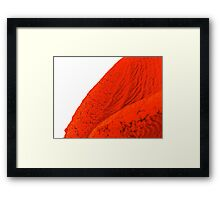 red macro rubber Framed Print