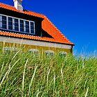 Typical Danish house in Jutland, Denmark by marina63