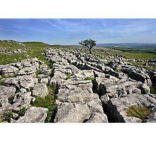 Yorkshire Dales Limestone pavement Photographic Print