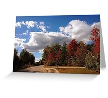 Wake Me Up When September Ends Greeting Card