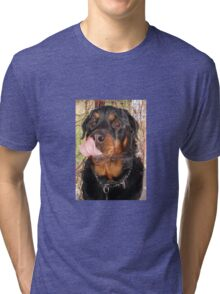Large Male Rottweiler Licking His Lips Tri-blend T-Shirt
