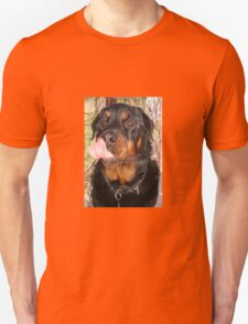 Large Male Rottweiler Licking His Lips T-Shirt