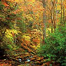 AUTUMN,ROARING FORK by Chuck Wickham