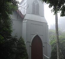 ST. GEORGE, MOUNT WILSON by Phil Woodman