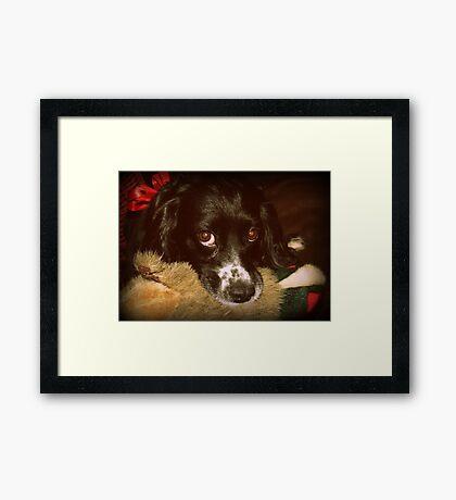 Tilly & Duck Framed Print