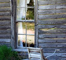 Window on Prairie Life by designingjudy