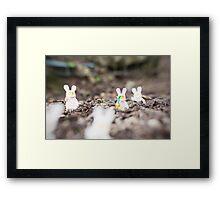 Carrot Hunt  Framed Print
