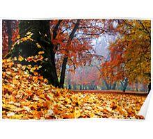 magical autumn Poster