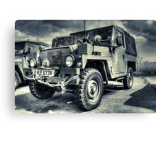 The Defender  Canvas Print