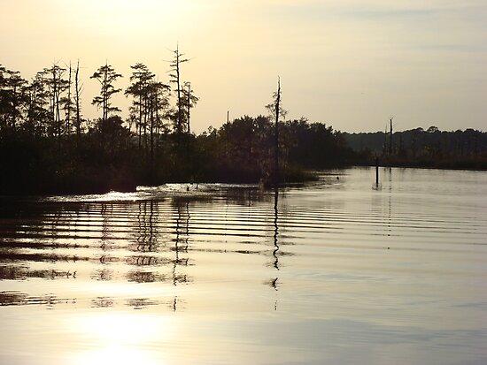 Sunset on Bear Creek 9-25-2012 by May Lattanzio