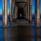 Under the Pier by camfischer