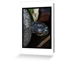 Excuse me - Have you seen my neck? Greeting Card