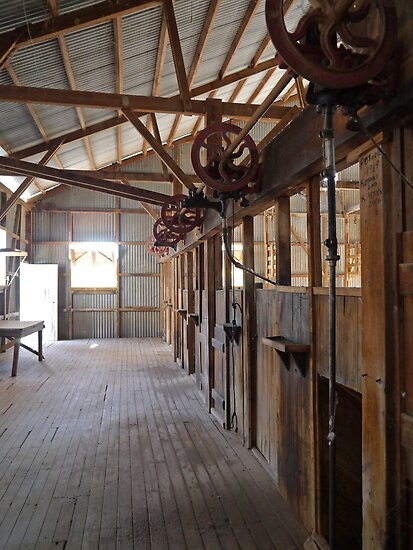 Shearers' Stands, Callandoon, Queensland, Australia by Margaret  Hyde