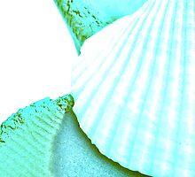blu shell by Marmellino