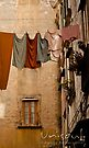 Hanging pale clothing by UniSoul