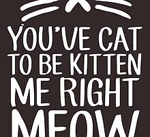 You've Cat To Be Kitten Me Right Meow by DesmondDesign