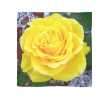 Golden Yellow Rose with Garden Background Scarf
