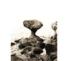 Kannesteinen Photographic Print