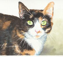 Tortoise-shell cat watercolor by Mike Theuer