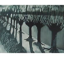 Leaving Falls - Willow Trees Painting Photographic Print