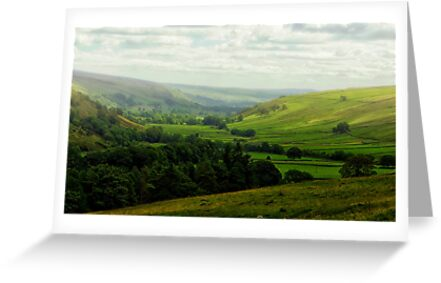 Mist in the Dale by Trevor Kersley