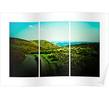 Long Mynd (Lomography) Poster