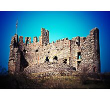 Dudley Castle (Lomography) by Joel Stone