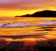 Bruny Island sunrise - Bruny Island, Tasmania, Australia by PC1134