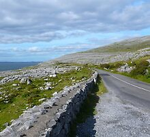 The Burren by ccr358