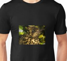 Baby thrush in a holly bush Unisex T-Shirt