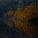 Reflection of Fall by amanda reed