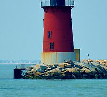 Cape Henlopen Lighthouse by BeachBumPics