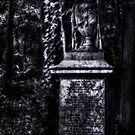 Highgate Cemetery 13 by Alan E Taylor